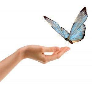 vlinder op hand - shutterstock_118291774